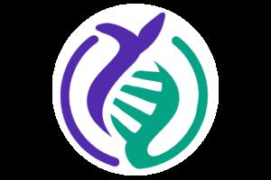 logo bifinove site onglet
